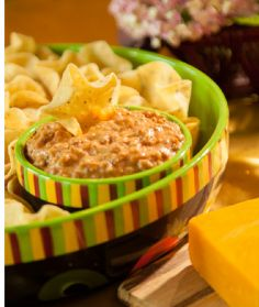 Kentucky Beer Cheese Salsa Dip  http://www.timfarmerscountrykitchen.com/appetizers.html