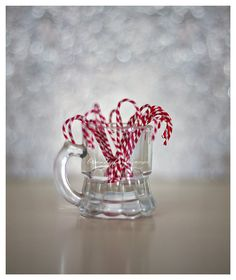 Christmas Candy Cane Holiday Photograph  red by BitsofLifeImages,