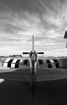 Beautiful P-51