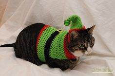 Crochet Elf Cat Swea