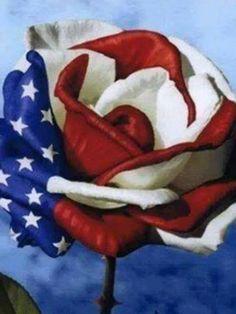 rose flag veterans day