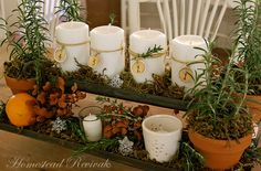 Homestead Revival: Advent