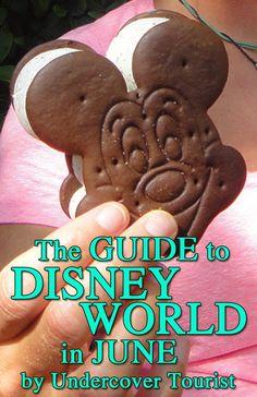 June planning for Disney World from @Donna Suh Wageman Tourist.