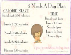 5 meals a day plan