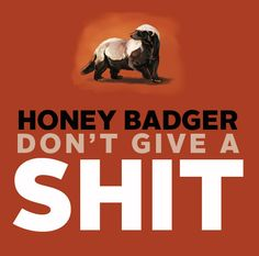 Honey Badger don't care! Honey badger puts the high in heisman