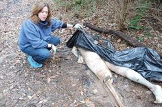 Scene from a body farm. A body farm is a research insititution for the study of the taphonomy of the human organism. Corpses are left exposed to the elements and other milieus in various ways as to gain insight in the process of human decomposition. These are forensic studies mainly in order to determine exact times of death of bodies in criminal cases.
