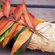Decorate with fall leaves | Make a wreath | Sunset.com