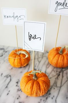 The ultimate friendsgiving guide including these great place settings name cards.