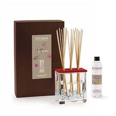 """Esteban Paris Esprit de thé Scented Bouquet - Each gift box includes a vase, its deco filler, a ceramic cap, 20 perfume sticks (8.5""""h) and a scented bouquet refill. 250ml/8.45 fl oz. Sale $49.99."""