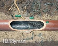 Keep invasive tree roots from plugging your sewer line with these expert tips.