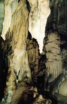 Kentucky ~ Mammoth Cave National Park