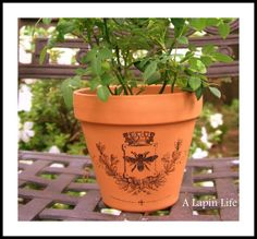 How to Decorate Flower Pots