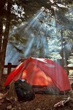 I really really want to go camping