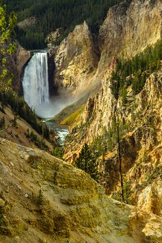 Lower Falls, Grand Canyon, Yellowstone Nat. Park, Wyoming
