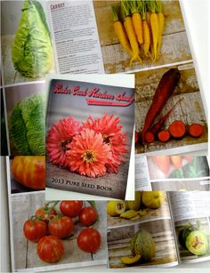Baker Creek Heirloom Seeds  I just received the most beautiful seed catalog I have ever seen! The photography is stunning. 212 pages in color and it's FREE! To request your own catalog go to: www.rareseeds.com    You won't be disappointed. Non-hybrid, Non-GMO, Non-Treated and Non-patented!