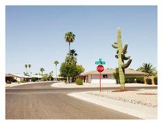 "Josef Hoflehner   ""Thunderbird Blvd, Phoenix, Arizona"""