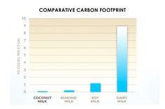 Choosing the Most Sustainable Milk or Milk Alternative