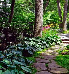 Shade Garden Design - pathway