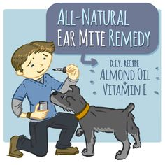 Home Remedy for Ear Mites Using Vitamin E and Almond Oil - good for my dog because of his skin allergies