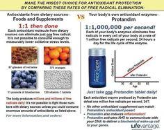 hydromet 5 1 5 5 ingredients in protandim