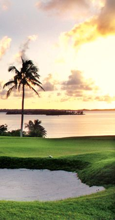 Sink a hole in one in #Bermuda.