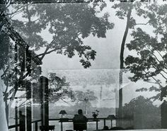 philip johnson's glass house by arnold newman.