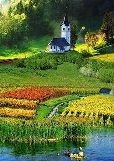 Church of the Fields, The Dolomites, Italy >>> wow! Isn't this gorgeous - the colors are so beautiful! I need to see this region of Italy NOW!