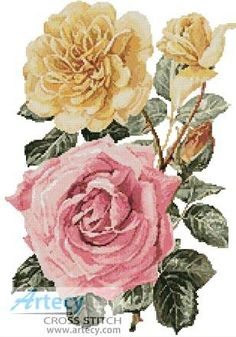Yellow and Pink Roses cross stitch pattern.