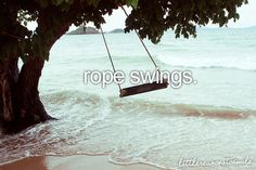 rope swings.