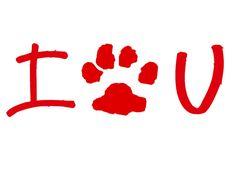 Save a life. Adopt a dog!