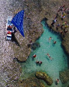 Swim in the natural pools of Porto de Galinhas, Brazil.