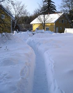 Lots of snow!!!