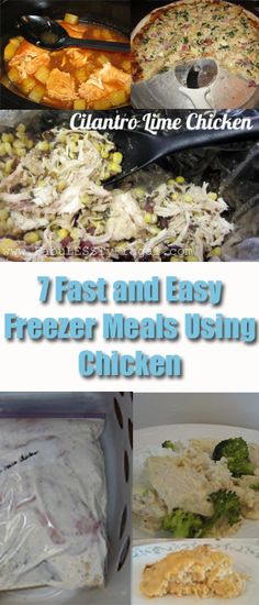 7 Fast and Easy Freezer Meals Using Chicken