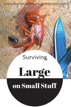 Surviving Large on Small Stuff | Survival Sherpa