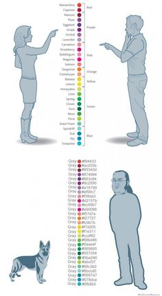 Colors according to women men dogs and programmers