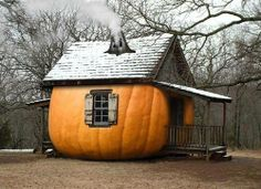 pumpkin hous, halloween house, dream houses