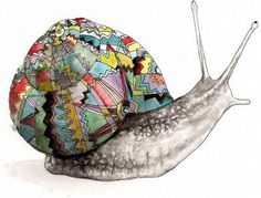 Snail with decorated shell
