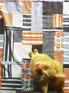Quilt made by Lotta Jansdotter with Bella fabric for Windham Fabrics
