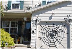 Spiders and web on garage door