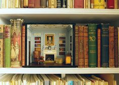 Shelf Room by sweetington (flickr)
