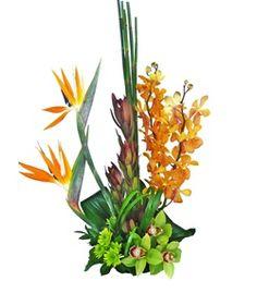 Bali Dream by @Cactus Flower, $79.99