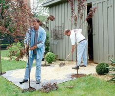 Mow a 6x6-foot grassy area very short. Plant a young, 9-foot-tall plum tree at each of the four corners. Place gray landscape cloth over the square and cover it with pea gravel a few inches thick.