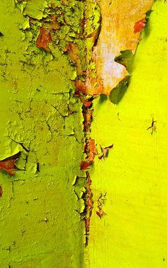 Peeling chartreuse