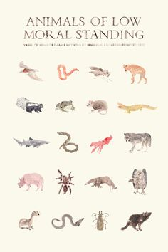 Animals of Low Moral Standing