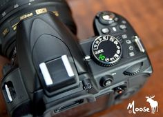 Tips and Tricks for the Nikon D3100
