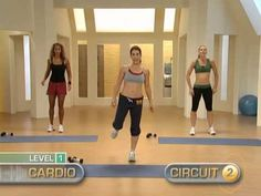 jillian michaels: 30 day shred - level 1