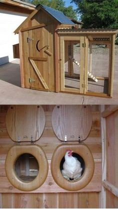 Funny!  Chicken outhouse!
