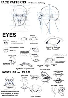Notes on drawing the face, eyes, ears, mouth and nose http://media-cache6.pinterest.com/upload/143904150563434848_810OfhTy_f.jpg mythidiot how to