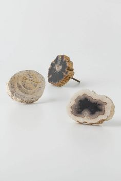 Large Petrified Knob - Anthropologie.com