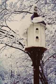 Birdhouse in the snow, so pretty